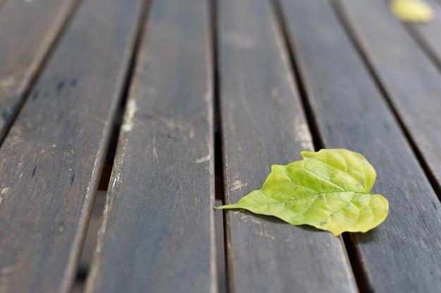 Gros plan des feuilles sèches sur le vieux fond en bois
