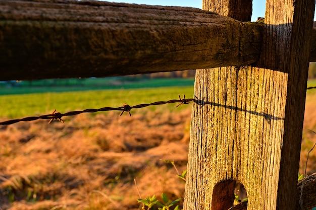 Gros plan d'un fil de fer barbelé sur une clôture en bois dans un champ sous la lumière du soleil