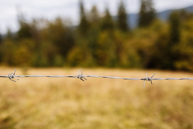 Un gros plan d'un fil de fer barbelé avec une montagne sur l'arrière-plan