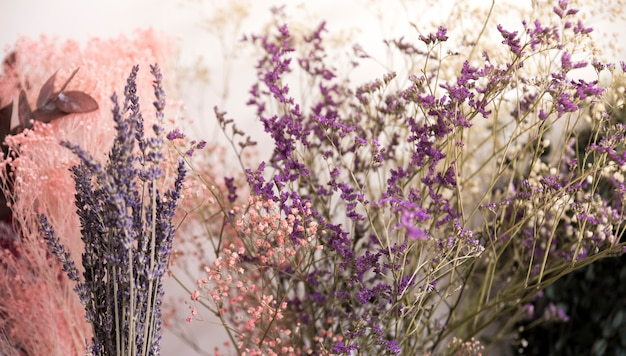 Gros plan, fleurs lavande