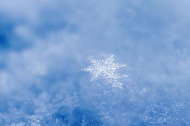 Gros plan de flocons de neige. photo macro. le concept de l'hiver, froid. copiez l'espace.