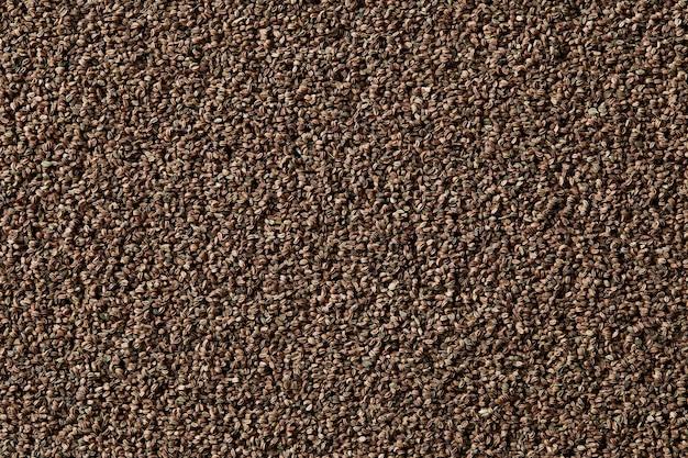 Gros plan sur fond de graines de céleri biologiques sèches et saines montrant les détails et la texture