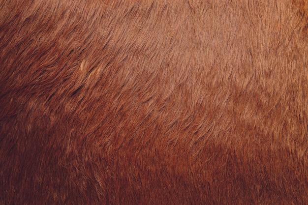 Gros plan de fond de texture de fourrure brune.