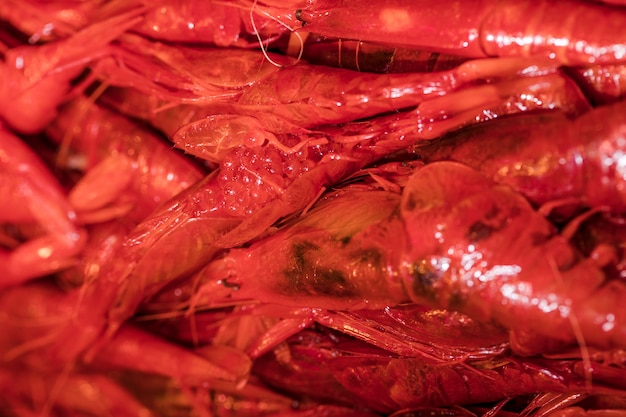 Gros plan, frais, crevette rouge