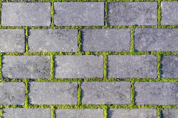Gros plan de galets avec une herbe verte dans les coutures. vieux fond de texture de chaussée en pierre