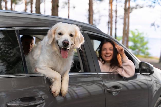 Gros plan des gens avec un chien en voiture
