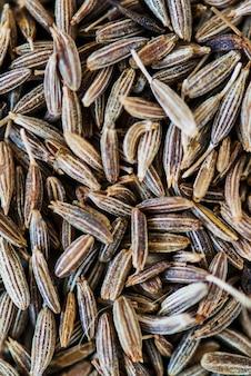 Gros plan de graines de cumin