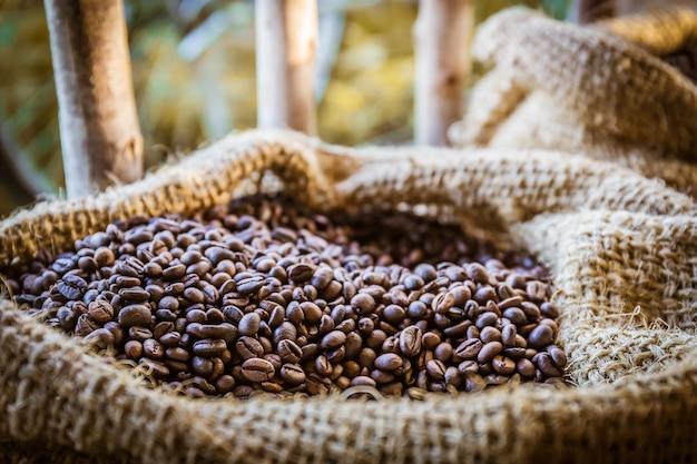 Gros plan de grains de café avec la lumière du soleil dans le sac gunny