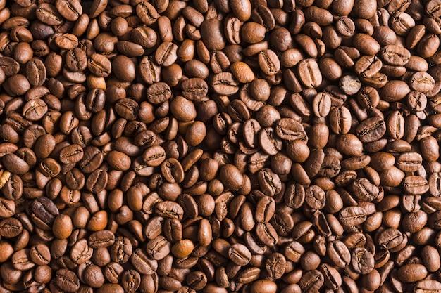 Gros plan, grains de café torréfiés