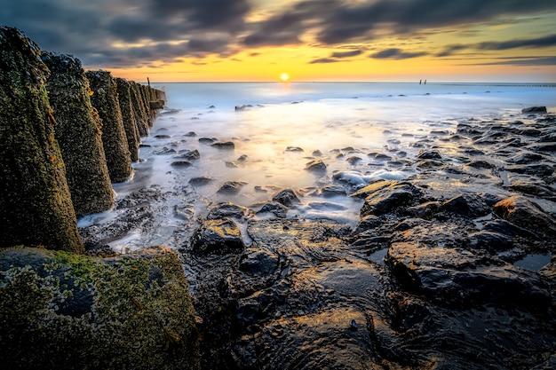 Gros plan grand angle de bois avec de la mousse sur le dessus dans un rivage menant à la mer au coucher du soleil