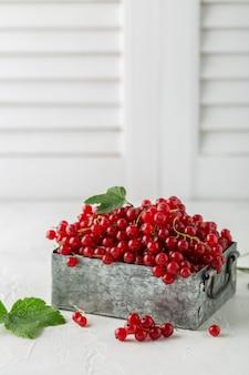 Gros plan de groseilles rouges mûres