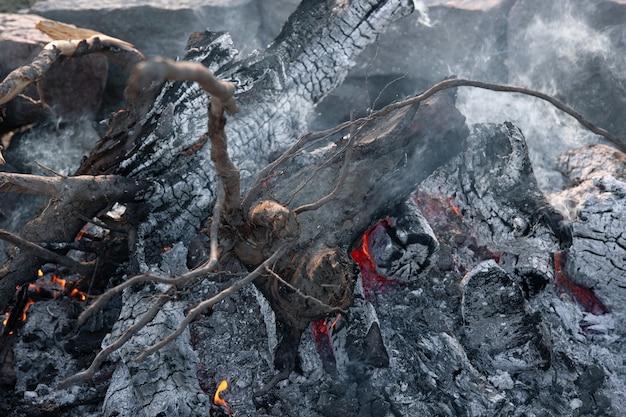 Gros plan des grosses bûches d'un arbre dans un feu mourant
