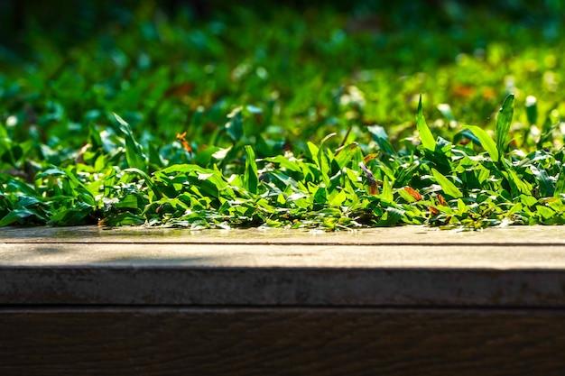 Gros plan sur l'herbe au sol avec effet de lumière du soleil et planche de bois.