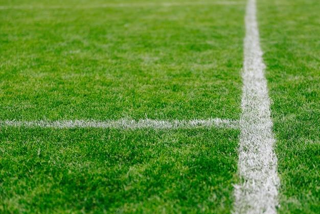 Gros plan d'herbe et de marques sur le terrain de football ou de soccer