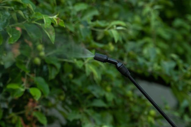 Gros plan homme agriculteur ouvrier pulvérisant un traitement antiparasitaire sur le jardin fruitier