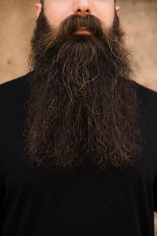 Gros plan, homme, longue barbe