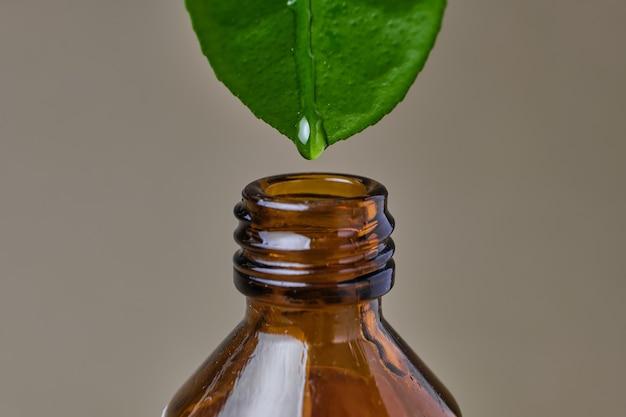 Gros plan d'huile essentielle dégoulinant de feuille naturelle fraîche dans une bouteille en verre sur fond beige