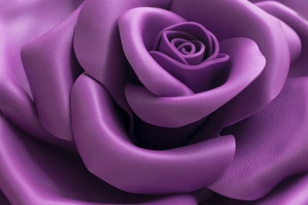 Gros plan l'image d'une belle rose violette.