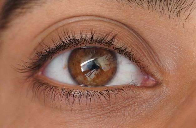 Un gros plan de l'image de l'oeil