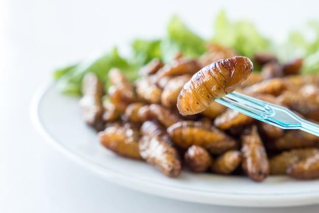 Gros plan des insectes frits dans un plat sur fond blanc. mise au point sélective