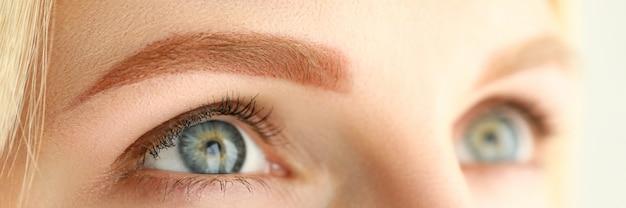 Gros plan, jeune, femme, parfait, brun clair, sourcil, recherche plan macro sur une femme après une procédure de beauté du visage. concept de cosmétologie et de bien-être maquillage permanent