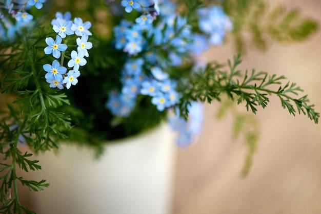 Gros plan d'un joli bouquet de fleurs bleues myosotis sur une surface floue avec un espace réservé au texte