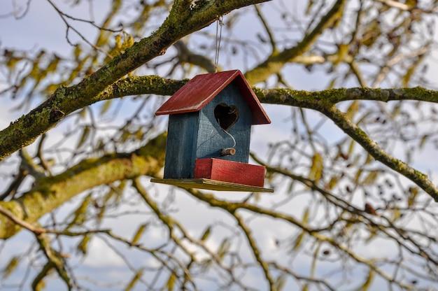 Gros plan d'une jolie maison d'oiseau en rouge et bleu avec un coeur suspendu à un arbre
