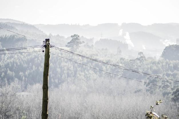 Gros plan d'une ligne électrique en bois avec des arbres et des collines en arrière-plan