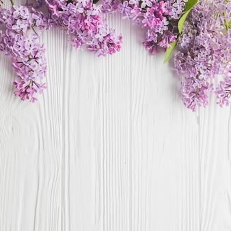 Gros plan, lilas, blanc