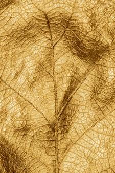 Gros plan macro détail de la feuille de chêne métallique or peint à la main fond vertical automne festif