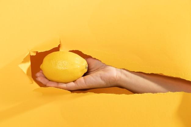 Gros plan, main, citron cru