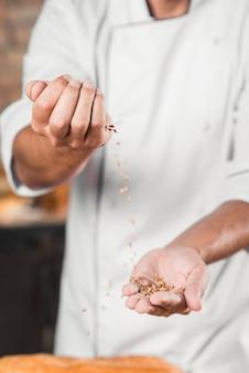 Gros plan de la main du boulanger en train de lancer des grains de blé bruns