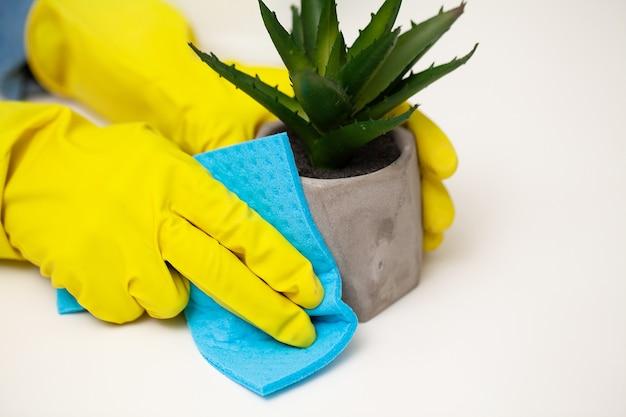 Gros plan de la main du travailleur essuyant la poussière au bureau.