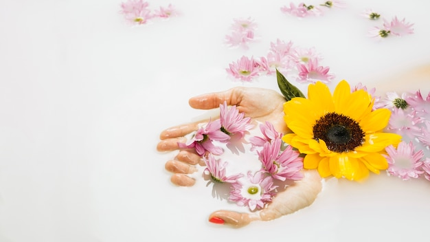 Gros plan de la main d'une femme avec de belles fleurs jaunes et roses dans l'eau du bain