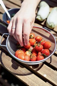 Gros plan de la main de l'homme cueillant une fraise fraîche dans un seau