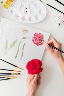 Gros plan, main, peinture, joli, fleur