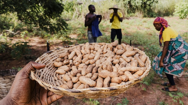 Gros plan d'une main tenant une assiette avec des arachides