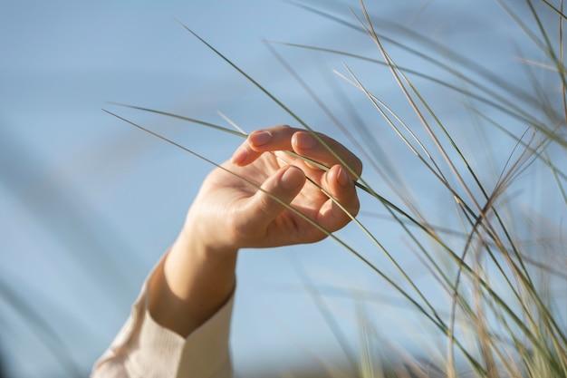 Gros plan, main, toucher, herbe