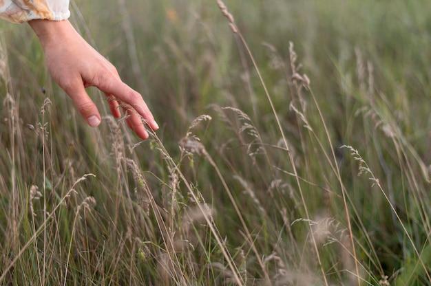 Gros plan main toucher les plantes