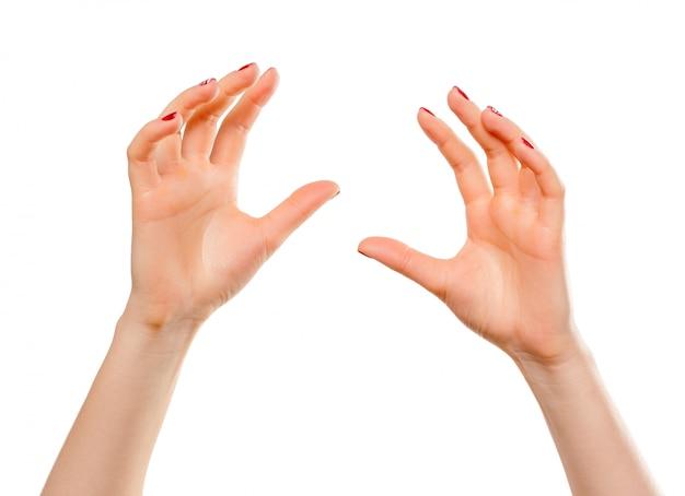 Gros plan des mains de la belle femme, paumes vers le haut. isolé sur blanc