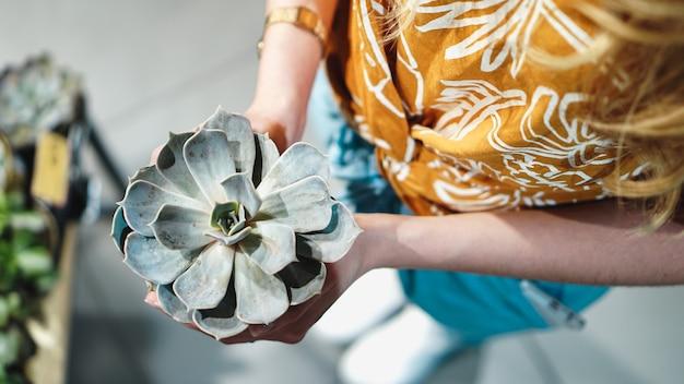 Gros plan des mains de femme tenant une fleur en pot