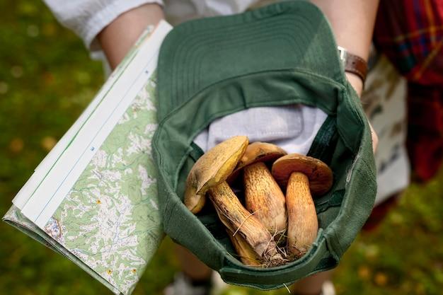 Gros plan, mains, tenue, chapeau, champignons
