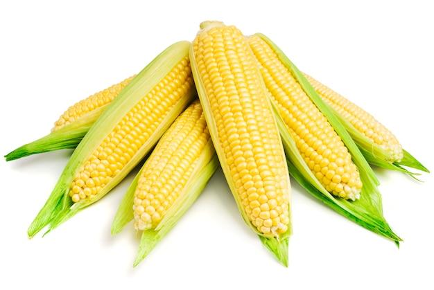 Gros plan de maïs sur blanc
