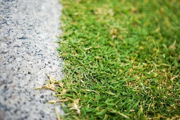 Gros plan et marche en pierre plate macro à côté du champ d'herbe pour le fond.