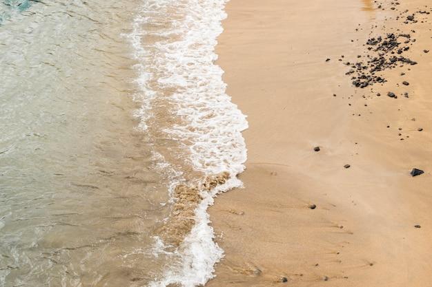 Gros plan, mer, toucher, sable, rivage