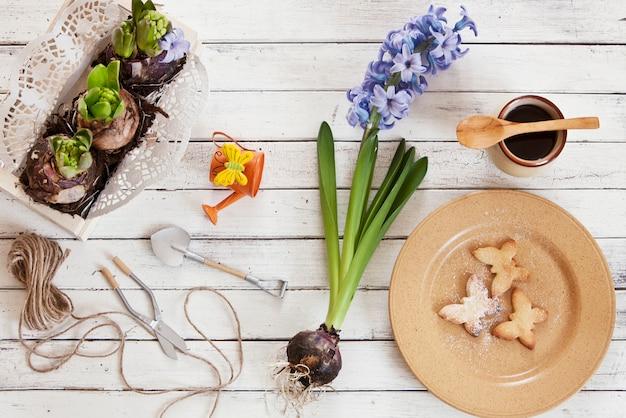 Gros plan, mignon, papillon, biscuits, plaque, jacinthe, fleurs
