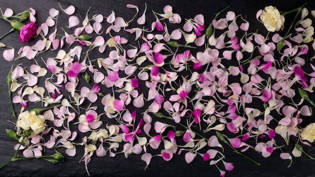 Gros plan sur le motif de pétales d'oeillet rose