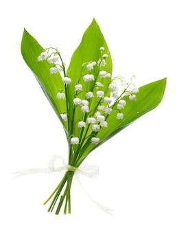 Gros plan sur le muguet fleurs sur blanc