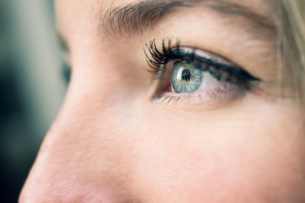 Gros plan d'un oeil bleu de jeune femme