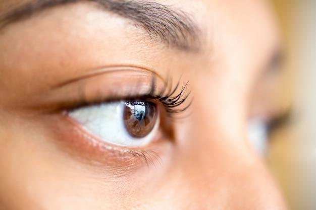 Gros plan de l'œil brun femelle regardant droit